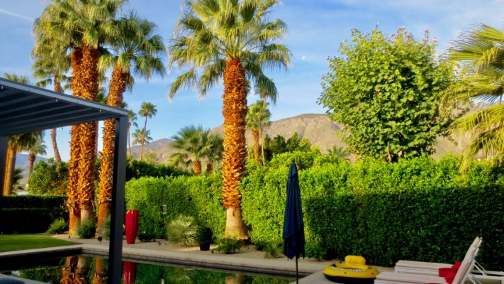 Palm Springs Living